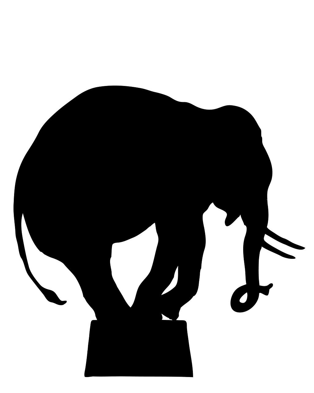 逃げないサーカスの象のお話